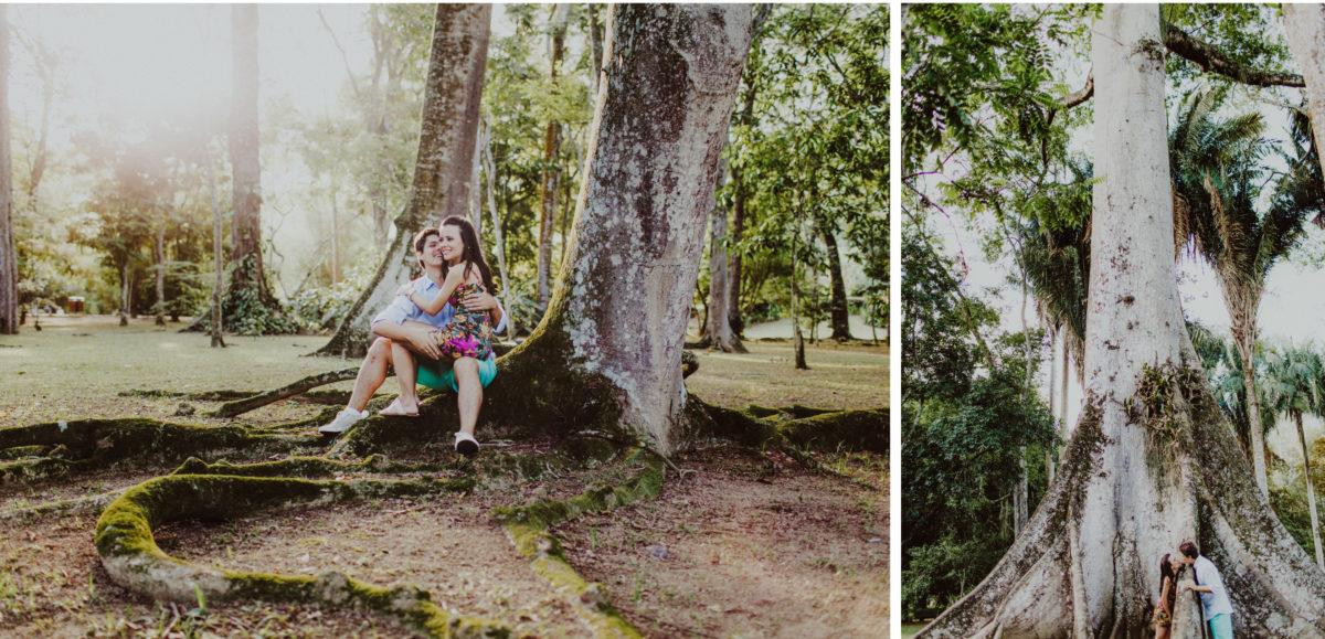 fotos de casal na floresta