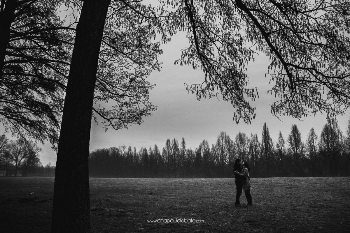 winter trees wedding engagement photography