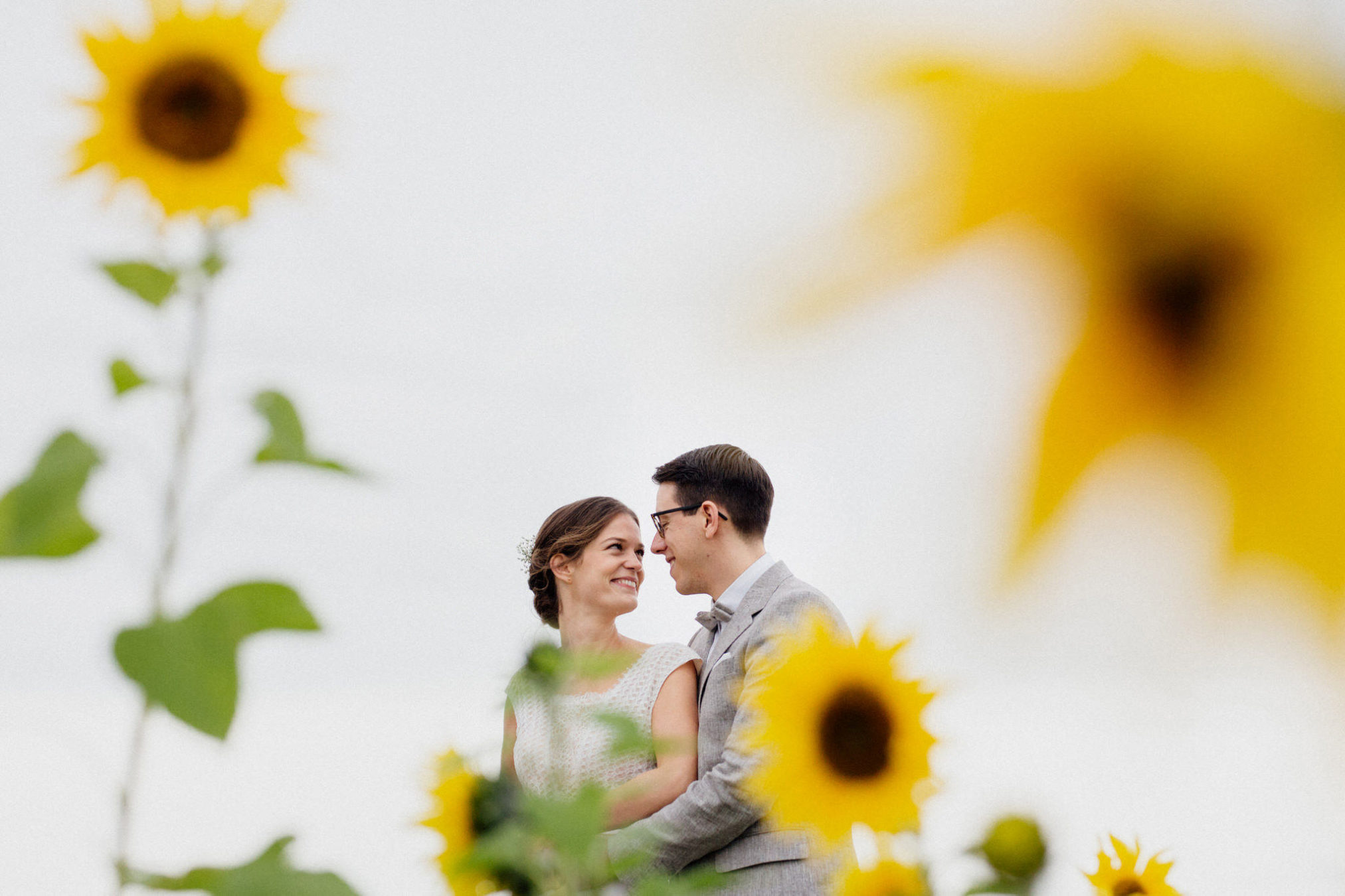 sunflowers wedding photos